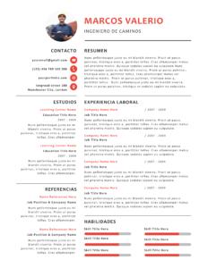 Formato Concentrado Plantillas Curriculum